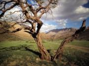 Interns Waterberg Namibia